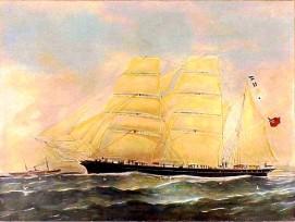 Otago_bark_1869-2