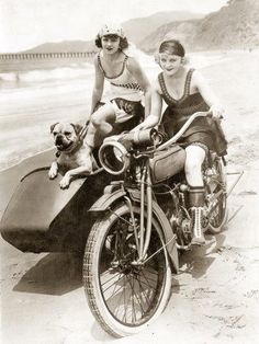 sidecar-flappers