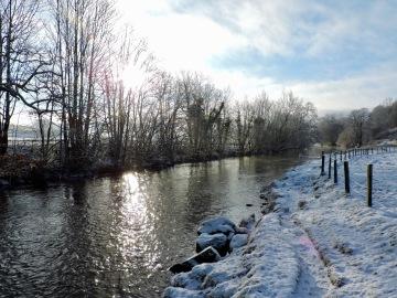 Dales Way (near Burneside): January 2019