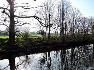 Dales Way (near Staveley): Easter Saturday 2019