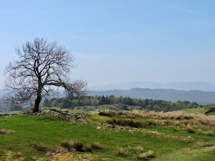 Dales Way (near Windermere): Easter Sunday 2019