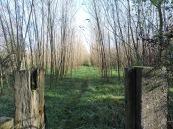 Somewhere, possibly in or near Longsleddale