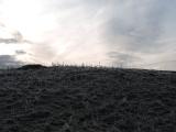 Dales Way (near Burneside)